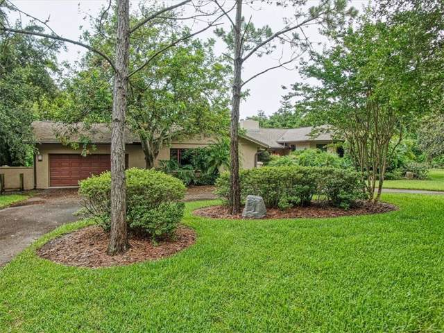 930 Pine Hill Road, Palm Harbor, FL 34683 (MLS #U8052586) :: Delgado Home Team at Keller Williams