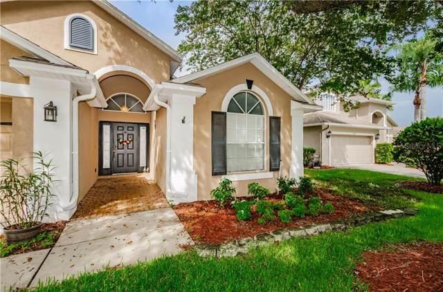 14440 Pepperpine Drive, Tampa, FL 33626 (MLS #U8052854) :: Lovitch Realty Group, LLC