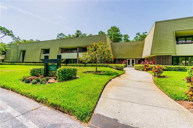 36750 Us Highway 19 N 2-212, Palm Harbor, FL 34684 (MLS #U8074785) :: The Light Team