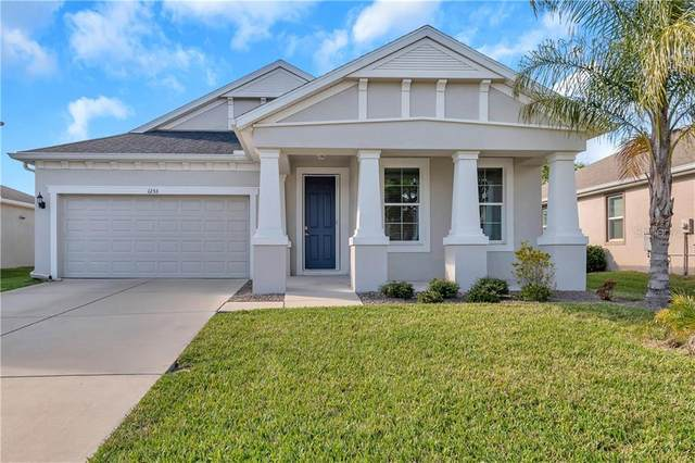1253 Windy Bay Shoal, Tarpon Springs, FL 34689 (MLS #U8076053) :: Keller Williams Realty Peace River Partners
