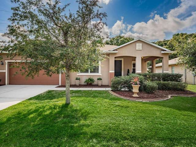 1870 Allendale Drive, Clearwater, FL 33760 (MLS #U8083783) :: Griffin Group