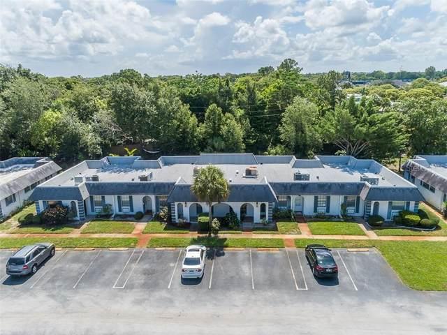 4234 Sheldon Place, New Port Richey, FL 34652 (MLS #U8089621) :: Delta Realty, Int'l.
