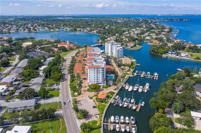 1325 Snell Isle Boulevard NE #310, St Petersburg, FL 33704 (MLS #U8090482) :: Alpha Equity Team