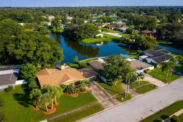 1121 Keystone Avenue S, Clearwater, FL 33756 (MLS #U8094531) :: Pepine Realty