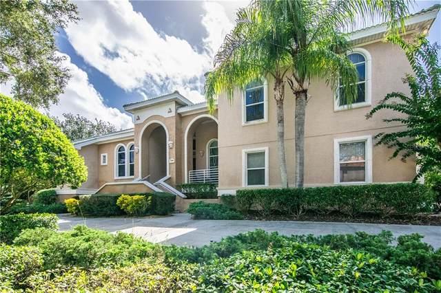 1146 Skye Lane, Palm Harbor, FL 34683 (MLS #U8095199) :: Bridge Realty Group