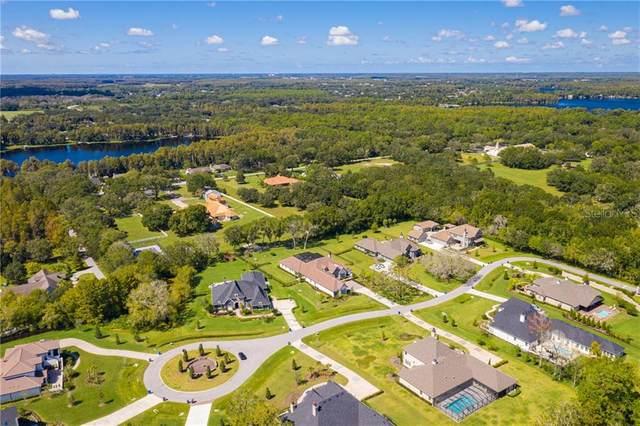 19114 Magnolia Farms Lane, Odessa, FL 33556 (MLS #U8100820) :: Team Bohannon Keller Williams, Tampa Properties