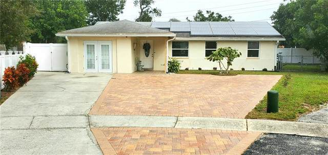 1133 19TH Avenue SW, Largo, FL 33778 (MLS #U8102953) :: Everlane Realty