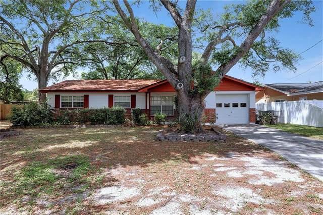 6746 Ralston Beach Circle, Tampa, FL 33614 (MLS #U8117705) :: Rabell Realty Group