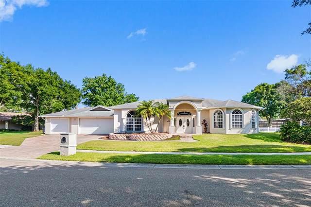 490 Palmdale Drive, Oldsmar, FL 34677 (MLS #U8122852) :: RE/MAX Marketing Specialists