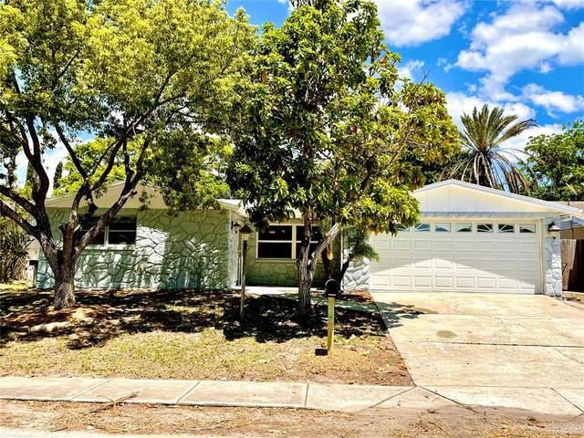 9224 Crabtree Lane, Port Richey, FL 34668 (MLS #U8123513) :: RE/MAX Local Expert