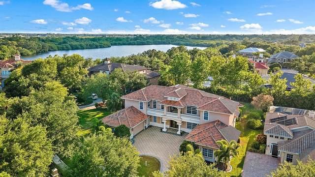 8618 Laurel Drive N, Pinellas Park, FL 33782 (MLS #U8125088) :: Vacasa Real Estate
