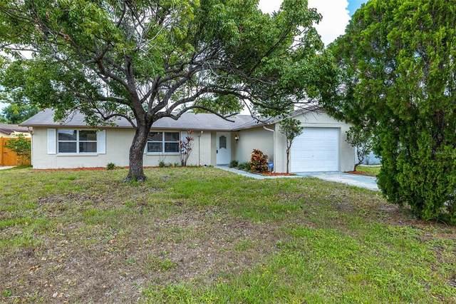 7419 Abington Avenue, New Port Richey, FL 34655 (MLS #U8126811) :: The Heidi Schrock Team