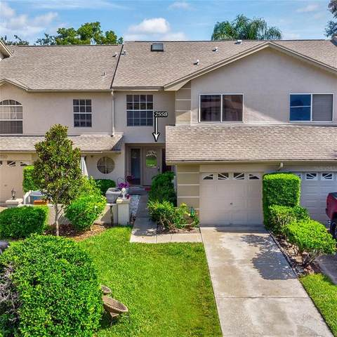2558 Stony Brook Lane, Clearwater, FL 33761 (MLS #U8129101) :: Zarghami Group