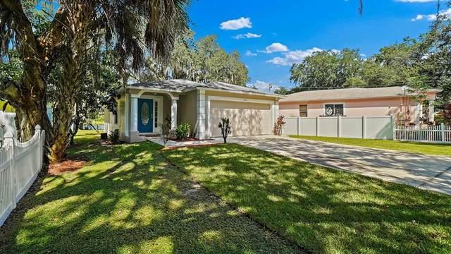 7508 Lakeshore Drive, Tampa, FL 33604 (MLS #U8139439) :: Cartwright Realty