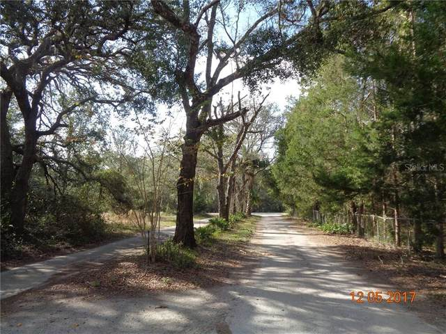 5475 State Road 11, De Leon Springs, FL 32130 (MLS #V4718514) :: BuySellLiveFlorida.com