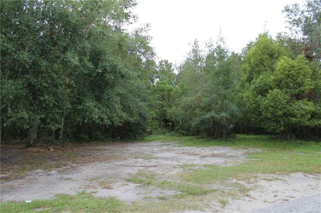 W 1ST Avenue, Pierson, FL 32180 (MLS #V4720837) :: KELLER WILLIAMS ELITE PARTNERS IV REALTY