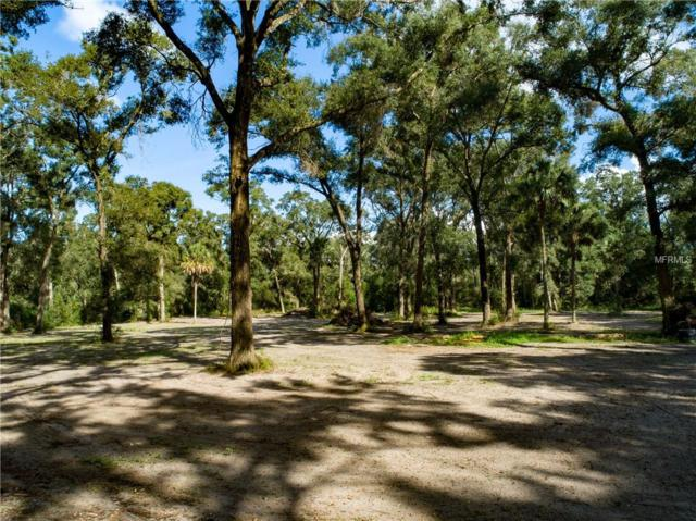 Greens Dairy Road, Deland, FL 32720 (MLS #V4904075) :: Mark and Joni Coulter | Better Homes and Gardens
