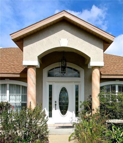 1390 Sonnet Court, Deltona, FL 32738 (MLS #V4907143) :: Premium Properties Real Estate Services