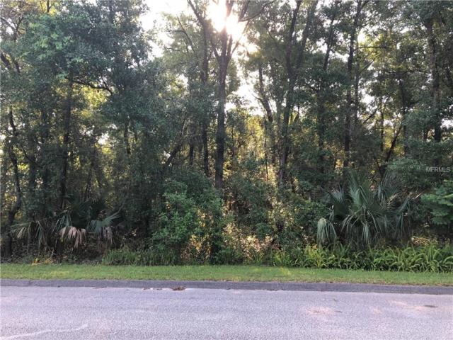 State Rd 472, Orange City, FL 32763 (MLS #V4907368) :: The Duncan Duo Team