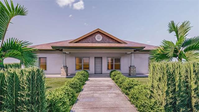 10 Caroline Drive, Pierson, FL 32180 (MLS #V4917098) :: Your Florida House Team