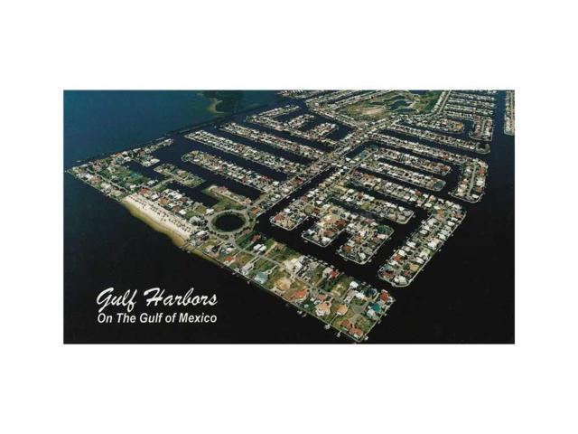 Westshore, New Port Richey, FL 34652 (MLS #W7535391) :: The Duncan Duo Team