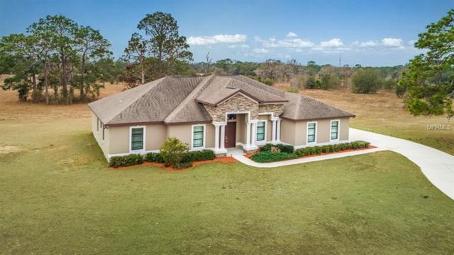 13430 Saddlebred Lane, Hudson, FL 34667 (MLS #W7637494) :: Griffin Group