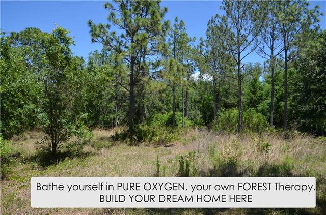 10875 Alico Pass, New Port Richey, FL 34655 (MLS #W7800611) :: Griffin Group