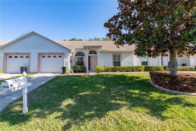 9238 Santa Monica Way, New Port Richey, FL 34655 (MLS #W7800880) :: The Duncan Duo Team