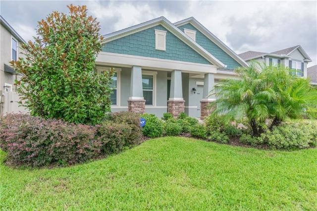 1543 Feather Grass Loop, Lutz, FL 33558 (MLS #W7802514) :: The Duncan Duo Team