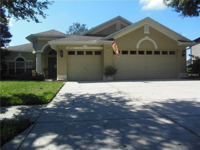 16712 Crested Angus Lane, Spring Hill, FL 34610 (MLS #W7805811) :: RE/MAX CHAMPIONS
