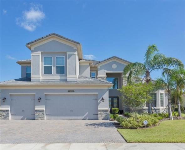 2628 Coco Palm Circle, Wesley Chapel, FL 33543 (MLS #W7806830) :: Griffin Group