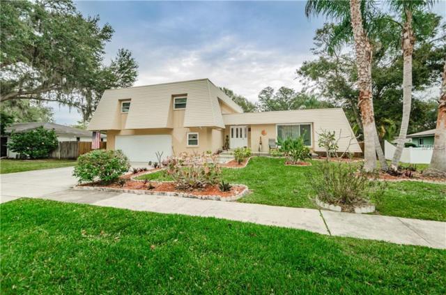 916 Highview Drive, Palm Harbor, FL 34683 (MLS #W7808411) :: Delgado Home Team at Keller Williams