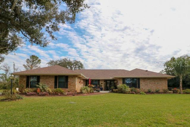 8808 Skymaster Drive, New Port Richey, FL 34654 (MLS #W7808939) :: The Duncan Duo Team