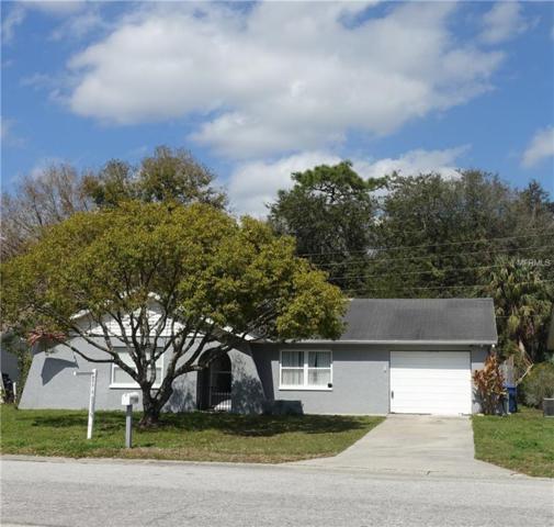 7221 Carmel Avenue, New Port Richey, FL 34655 (MLS #W7809593) :: Griffin Group