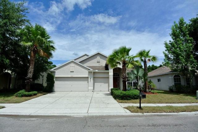 9302 Edistro Place, New Port Richey, FL 34654 (MLS #W7810988) :: The Duncan Duo Team