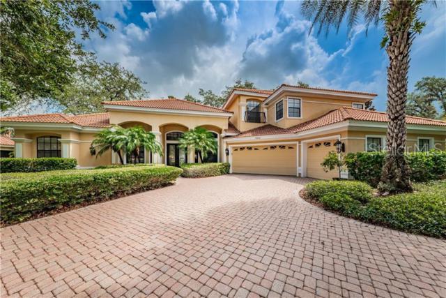 10640 Pontofino Circle, Trinity, FL 34655 (MLS #W7811906) :: Griffin Group