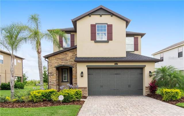 29112 Perilli Place, Wesley Chapel, FL 33543 (MLS #W7813081) :: Griffin Group