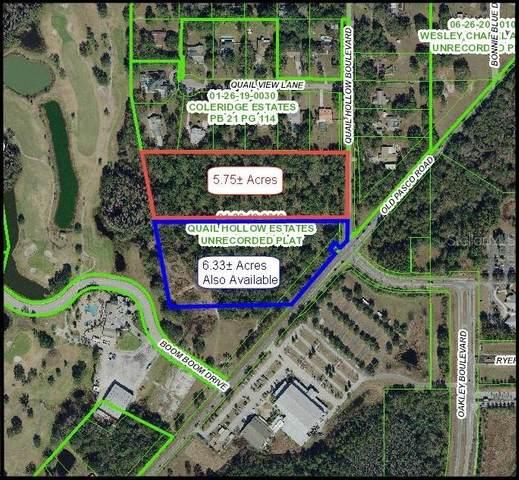 Quail Hollow Blvd, Wesley Chapel, FL 33544 (MLS #W7813329) :: The Kardosh Team