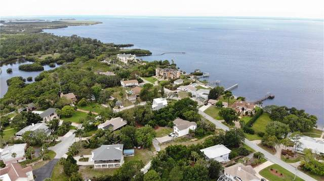 LOT 17 Bluff Boulevard, Holiday, FL 34691 (MLS #W7813544) :: Rabell Realty Group