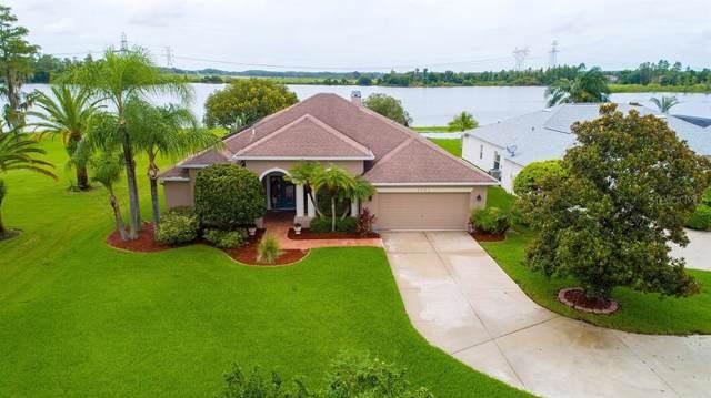 1751 Bocawood Court, Trinity, FL 34655 (MLS #W7814204) :: Lovitch Realty Group, LLC