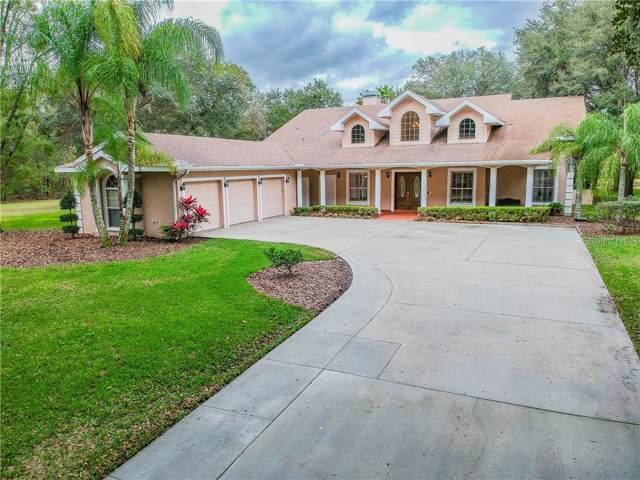 1508 Newberger Road Road, Lutz, FL 33549 (MLS #W7819992) :: Team Bohannon Keller Williams, Tampa Properties