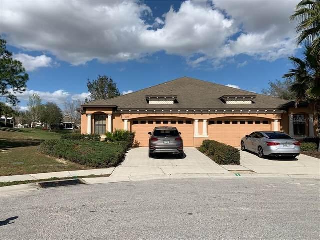 14157 Sweetshrub Court, Brooksville, FL 34613 (MLS #W7820726) :: Griffin Group