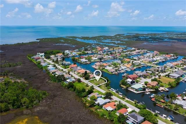 Southwind Drive, Hudson, FL 34667 (MLS #W7822949) :: Zarghami Group