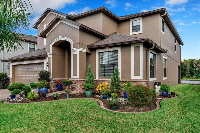 12740 Mountain Springs Place, Trinity, FL 34655 (MLS #W7827800) :: RE/MAX Marketing Specialists