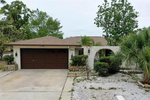 Port Richey, FL 34668 :: Armel Real Estate
