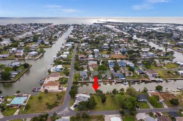 4461 Bimini Drive, Hernando Beach, FL 34607 (MLS #W7833571) :: Premium Properties Real Estate Services