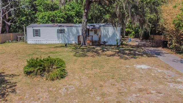 10333 Kim Lane, Hudson, FL 34669 (MLS #W7833743) :: Rabell Realty Group