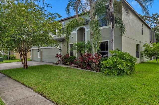 10840 Rain Lilly Pass, Land O Lakes, FL 34638 (MLS #W7835271) :: Vacasa Real Estate