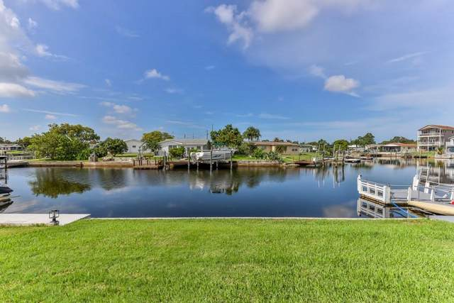 4418 Floramar Terrace, New Port Richey, FL 34652 (MLS #W7835714) :: Lockhart & Walseth Team, Realtors