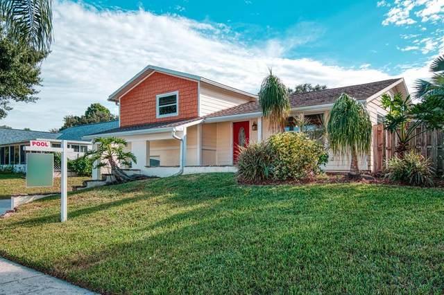 815 Cavemill Way, Tarpon Springs, FL 34689 (MLS #W7838025) :: Orlando Homes Finder Team